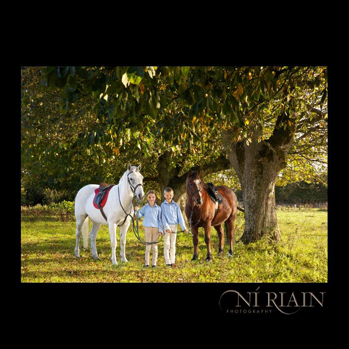 Horse photographer Ireland pony Ni Riain Photography