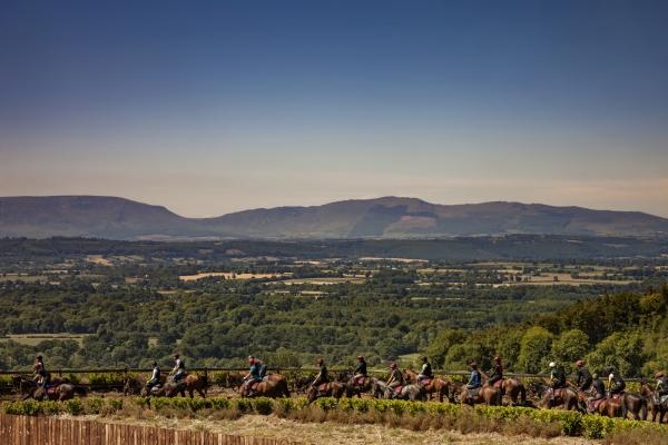 Joseph-OBrien-Horse-Trainer-Owning-Kilkenny-Ireland-Ni-Riain-Equine-photographer-285