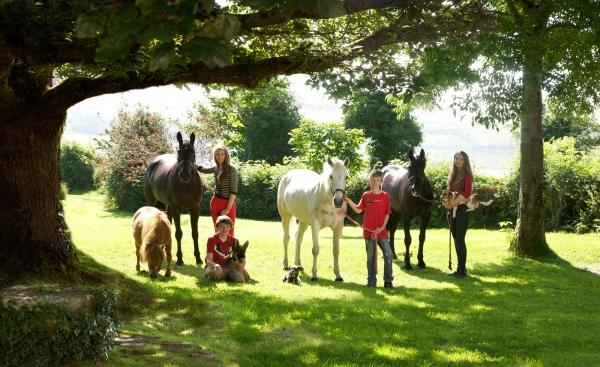 Horse Photographer Ireland Equine Fine Art Professional Photography