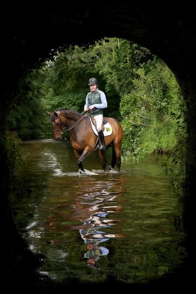 greg broderick showjumper ireland Horse photographer Ireland Professional Ni Riain Fine Art Equine Photography