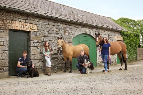 Horse Photographer Ireland Ni RiainEquine Fine Art Professional Photography