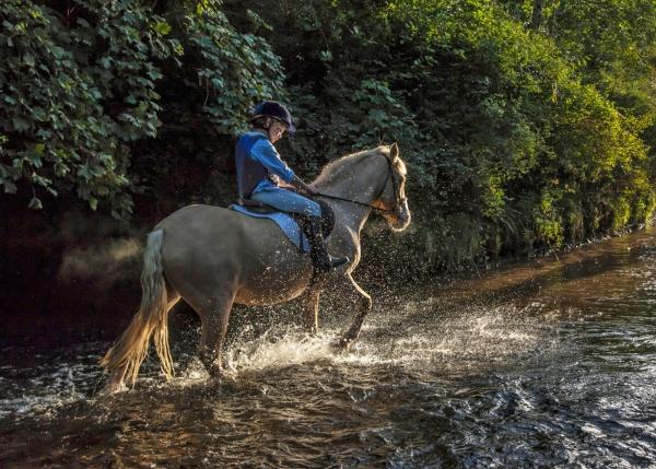 Boy in river on pony Pony club minimus rider Horse photographer Ireland Professional Ni Riain Fine Art Equine Photography