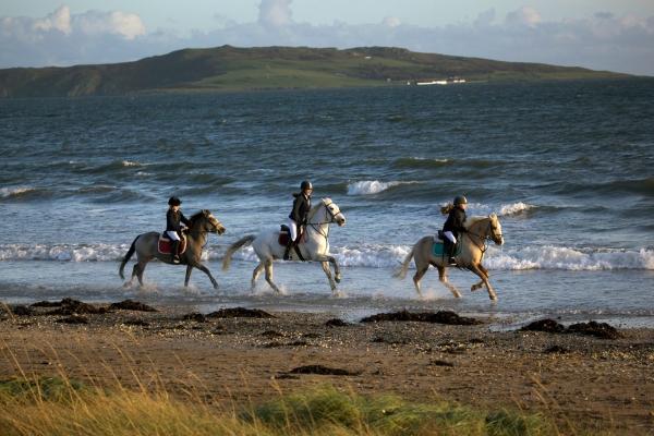 Ado McGuinnes Racing Showjumping family Ni Riain Fine Art Equine Photography
